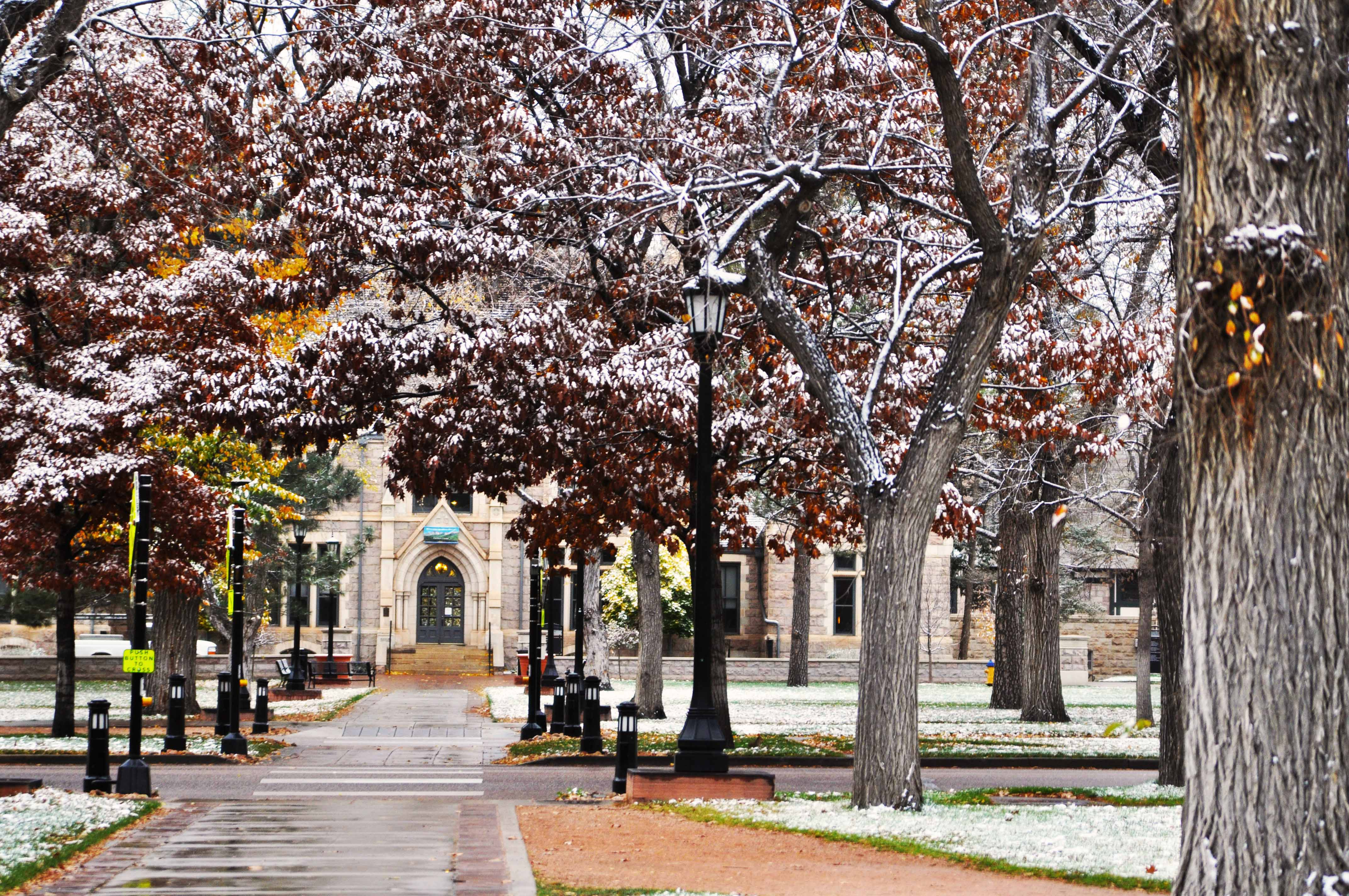 Student's photo makes the grade • colorado college.