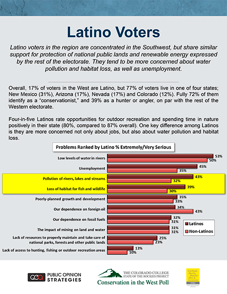 LatinoVoters_Topic_17